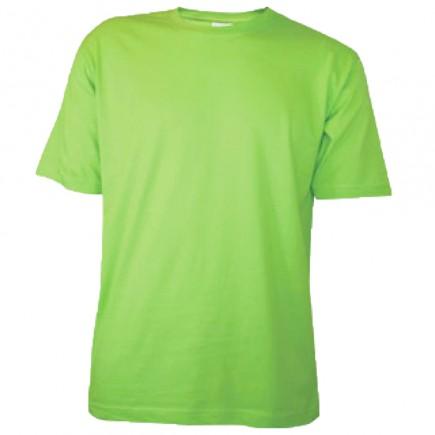 Футболка детская светло-зеленая однотонная без рисунка Дарси